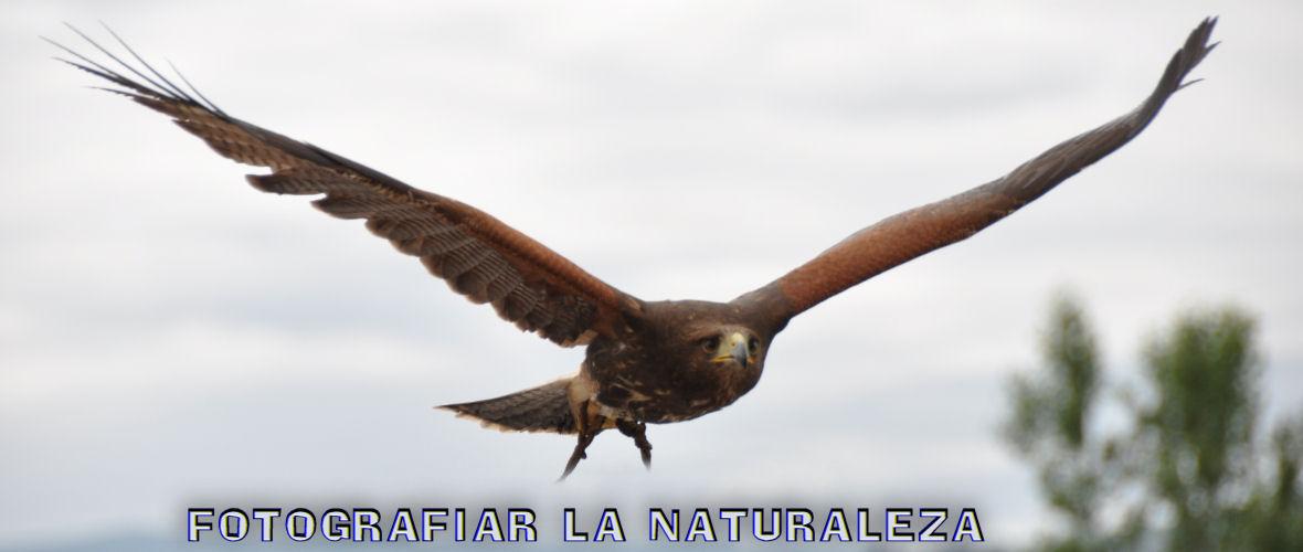 Fotografiar la Naturaleza